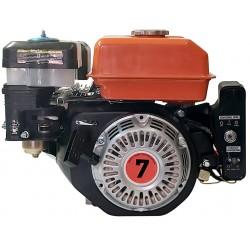 Двигатель с эл.стартером и сухим сцеплением под звездочку Bizon 170FE-S(C)