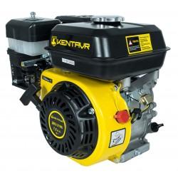 Двигатель Кентавр ДВЗ-210Б с центробежным сцеплением